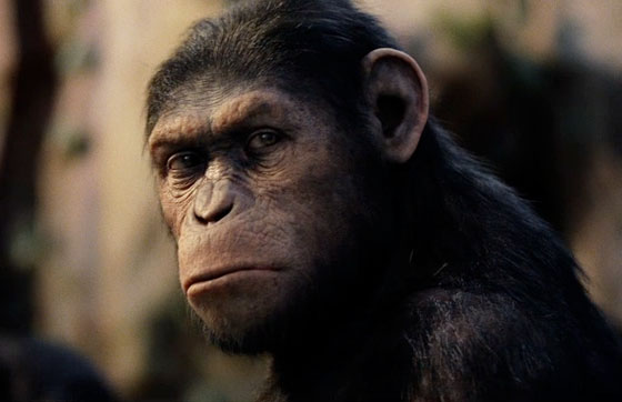 Watch the new RISE OF THE PLANET OF THE APES theatrical trailer on FilmEdge.net